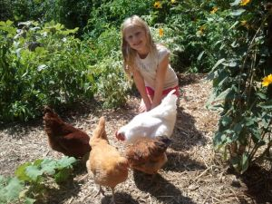 Anna and the Hens